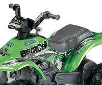 Детский квадроцикл Peg Perego Corral Bearcat (Green)