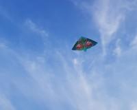 Детский воздушный змей Gunther Фламинго