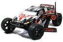 Автомобиль Brushless Truck 4WD 1:5 2.4GHz RTR Version (BSD Racing, BS502T)