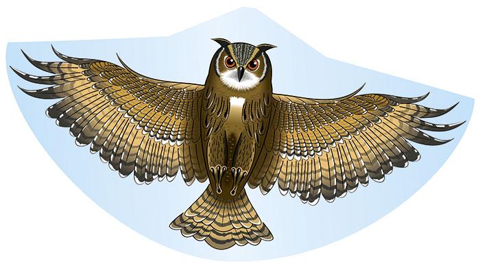Воздушный змей Eule (Сова)